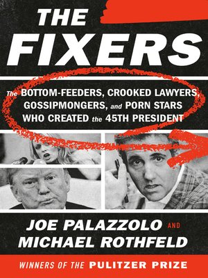cover image of The Fixers