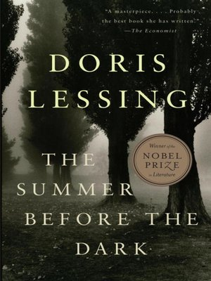 cover image of The Summer Before the Dark