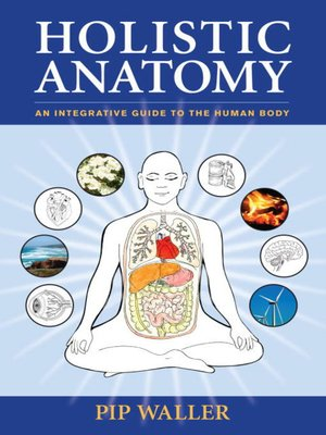 cover image of Holistic Anatomy