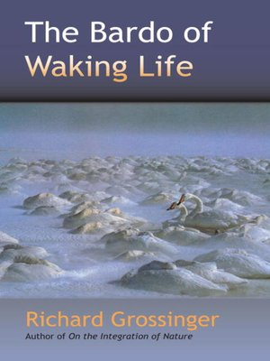 cover image of The Bardo of Waking Life