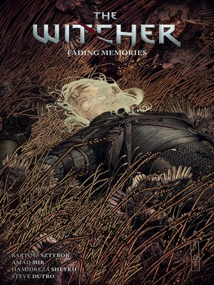 cover image of The Witcher Volume 5