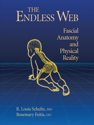 cover image of The Endless Web