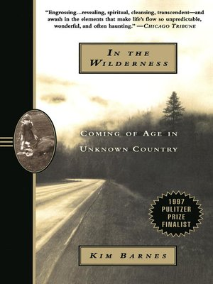 cover image of In the Wilderness