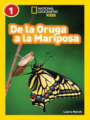 cover image of National Geographic Readers: De la Oruga a la Mariposa (Caterpillar to Butterfly)