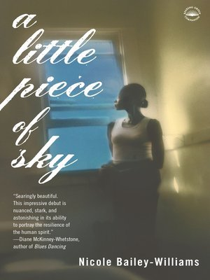 cover image of A Little Piece of Sky