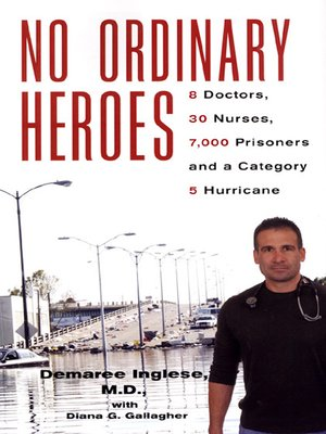 cover image of No Ordinary Heroes