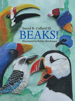 cover image of Beaks!