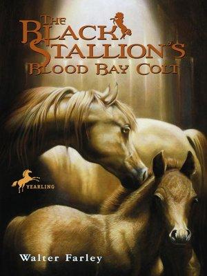 cover image of The Black Stallion's Blood Bay Colt