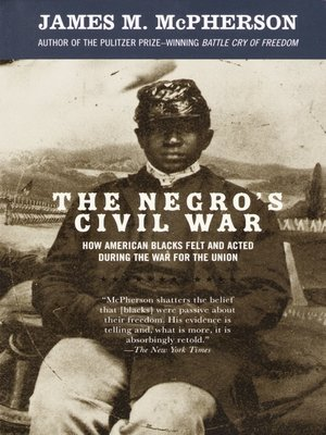 cover image of The Negro's Civil War