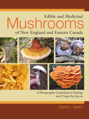 cover image of Edible and Medicinal Mushrooms of New England and Eastern Canada