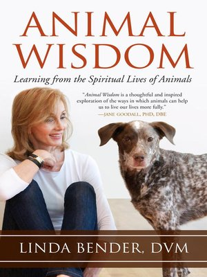 cover image of Animal Wisdom