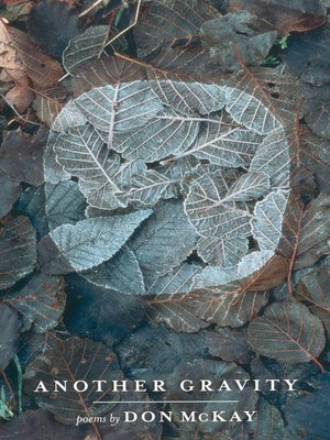 cover image of Another Gravity