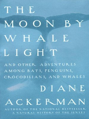 cover image of The Moon by Whale Light