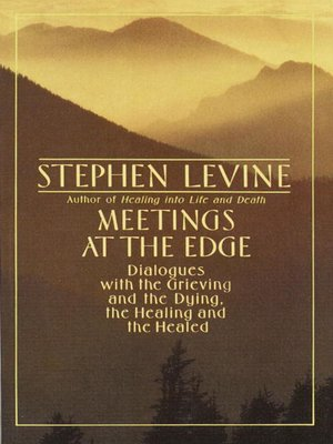 cover image of Meetings at the Edge