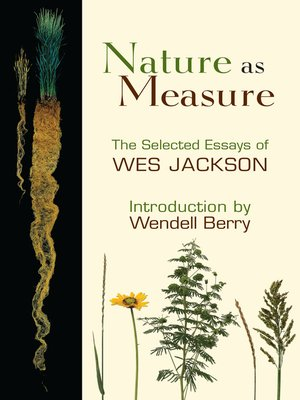 cover image of Nature as Measure