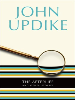 cover image of The Afterlife