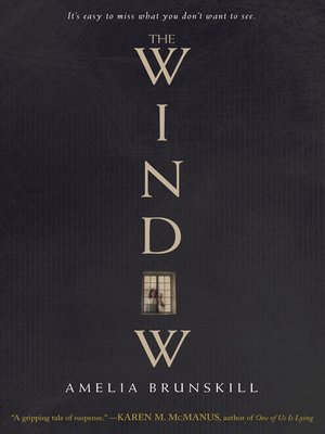 cover image of The Window