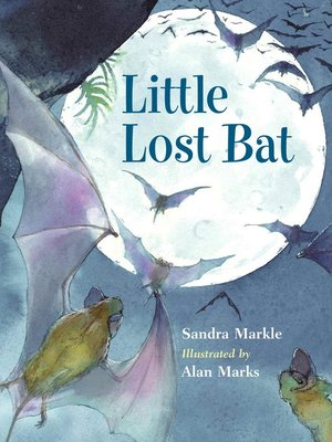 cover image of Little Lost Bat