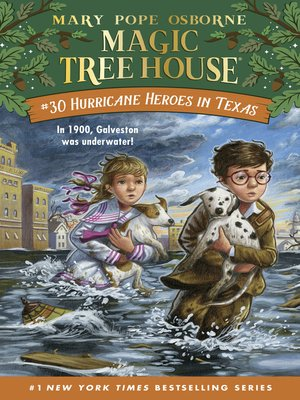 cover image of Hurricane Heroes in Texas