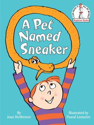 cover image of A Pet Named Sneaker