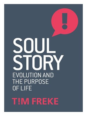 cover image of Soul Story