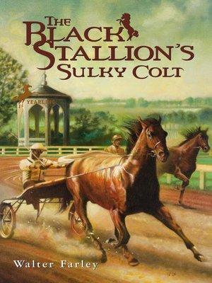 cover image of The Black Stallion's Sulky Colt