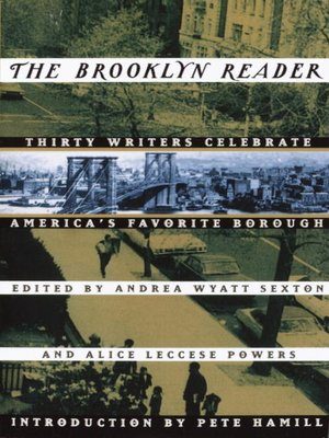 cover image of The Brooklyn Reader