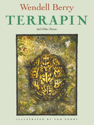 cover image of Terrapin