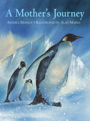 cover image of A Mother's Journey