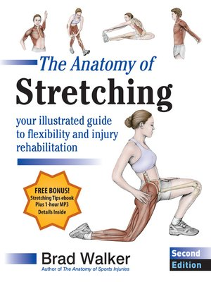 cover image of The Anatomy of Stretching