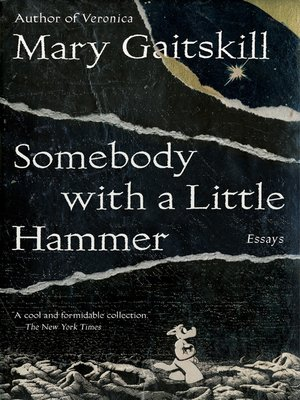 cover image of Somebody with a Little Hammer