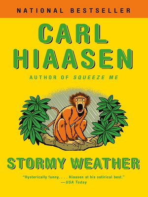 cover image of Stormy Weather
