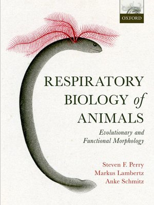 cover image of Respiratory Biology of Animals