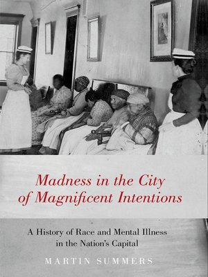 cover image of Madness in the City of Magnificent Intentions