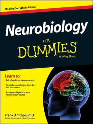 cover image of Neurobiology For Dummies
