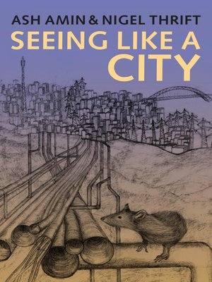 cover image of Seeing Like a City