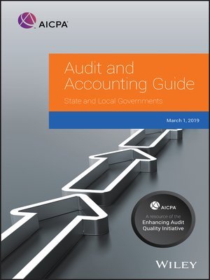 cover image of Audit and Accounting Guide