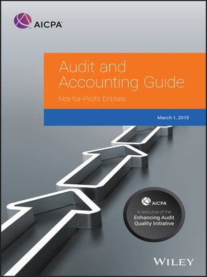 cover image of Auditing and Accounting Guide