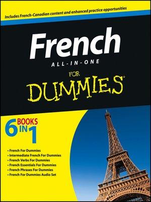 cover image of French All-in-One For Dummies