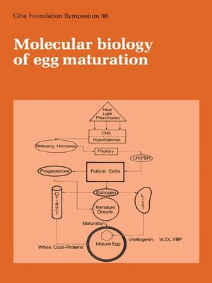cover image of Molecular Biology of Egg Maturation