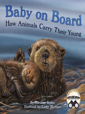 cover image of Baby on Board