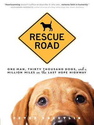 cover image of Rescue Road
