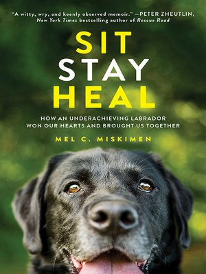 cover image of Sit Stay Heal