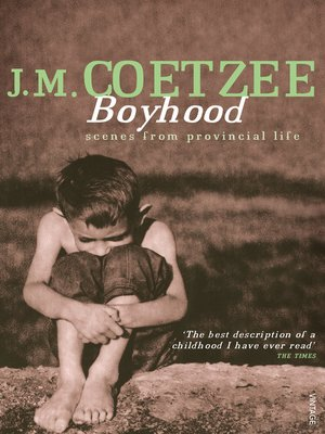 cover image of Boyhood