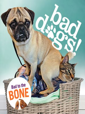 cover image of Bad Dogs