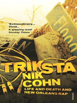 cover image of Triksta