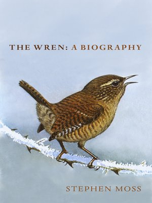 cover image of The Wren