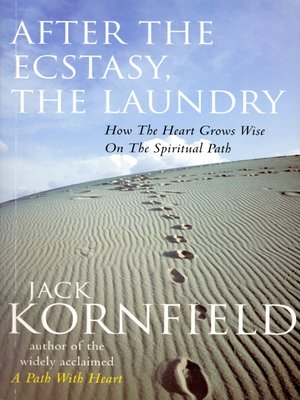cover image of After the Ecstasy, the Laundry