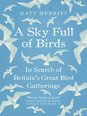 cover image of A Sky Full of Birds