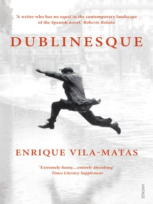 cover image of Dublinesque